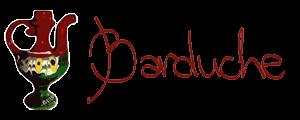 Barduche Choir
